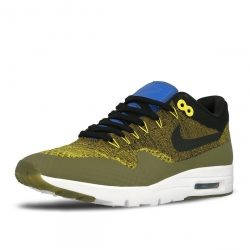 Nike Air Max 1 Ultra Flyknit [843387-302]