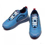 Nike Air Max 720 [AR9293-401]